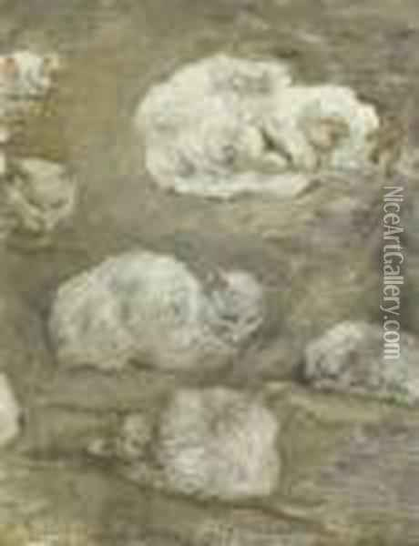 Study Of Cats Oil Painting - Theophile Alexandre Steinlen