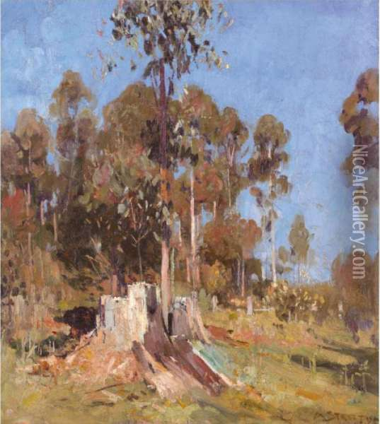 Impression Bronze, Cream, Blue Oil Painting - Arthur Ernest Streeton