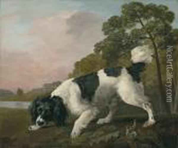 A Black And White Spaniel  Following A Scent, In A Landscape With Alake And A Country House Beyond Oil Painting - George Stubbs