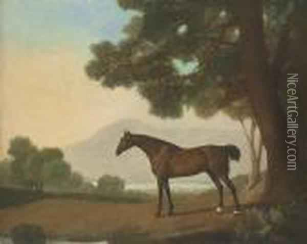 Lord Clermont's Bay Racehorse Johnny Oil Painting - George Stubbs