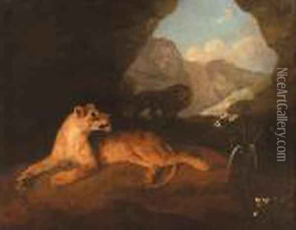 A Lion And Lioness In A Cave Oil Painting - George Stubbs
