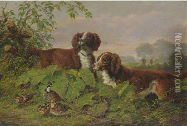 Two Setters And Quail Oil Painting - Arthur Fitzwilliam Tait