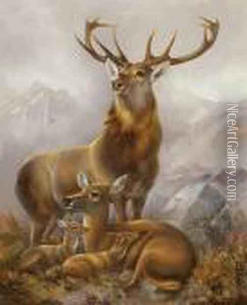 American, - Stag, Hind Andfawns, Circa 1850 Oil Painting - Arthur Fitzwilliam Tait
