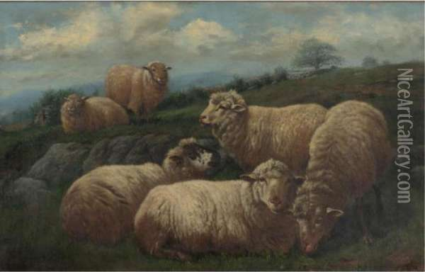 Sheep In A Pasture Oil Painting - Arthur Fitzwilliam Tait