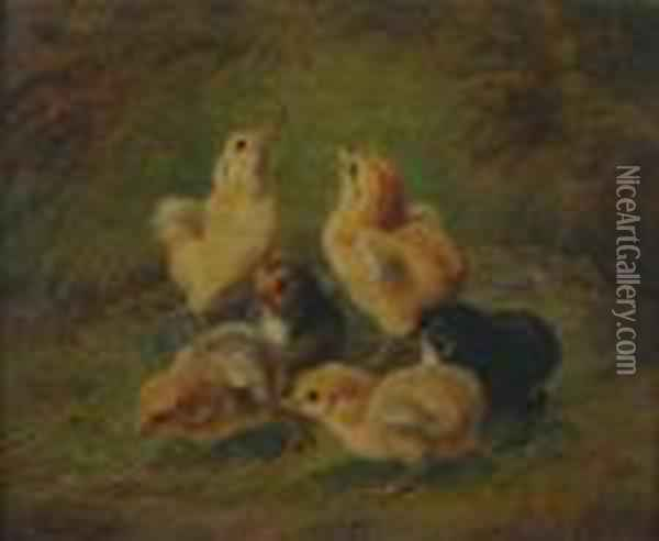 Baby Chicks Oil Painting - Arthur Fitzwilliam Tait