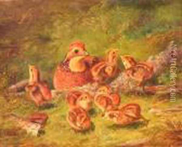 Ruffed Grouse And Chicks Oil Painting - Arthur Fitzwilliam Tait