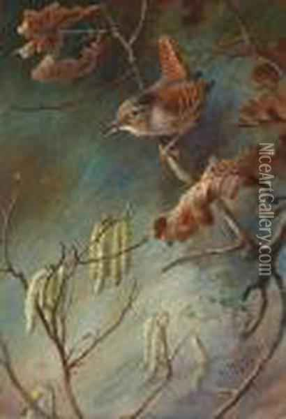 Study Of A Wren Perched Upon A Branch Oil Painting - Archibald Thorburn