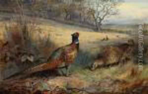 A Cock Pheasant With Two Hen  Pheasants In An Autumnal Landscape,other Pheasants Beyond, A Farm With  Sheep And Cattle In The Fardistance Oil Painting - Archibald Thorburn