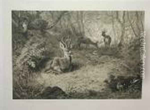A Highland Landscape With Stags And Grouse; A Woodland Landscape With Deer Oil Painting - Archibald Thorburn