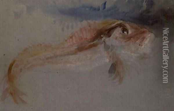 A Gurnard Oil Painting - Joseph Mallord William Turner