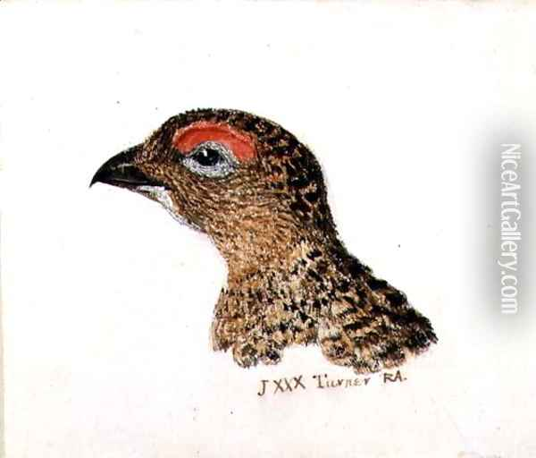Head of Grouse, from The Farnley Book of Birds, c.1816 Oil Painting - Joseph Mallord William Turner