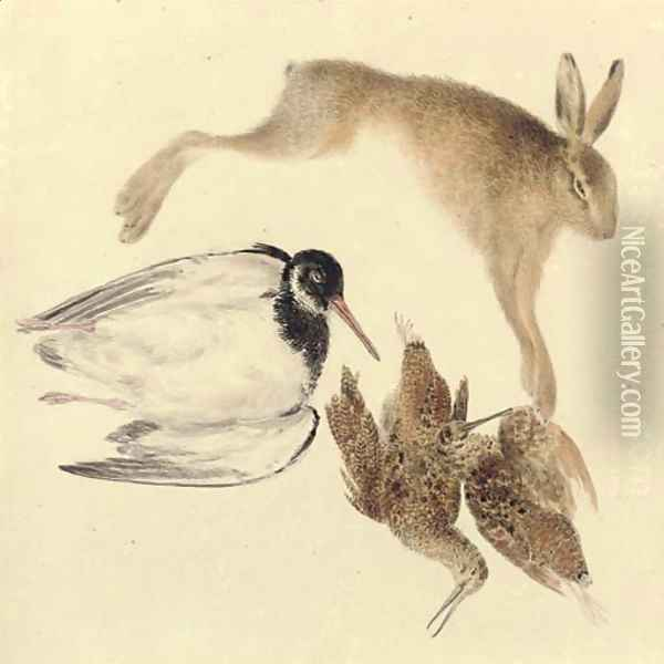 Study of dead game woodcock, oyster catcher and hare Oil Painting - Joseph Mallord William Turner