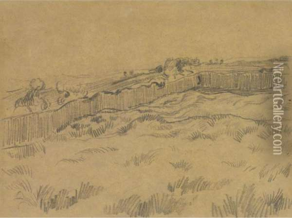 The Walled Wheatfield Oil Painting - Vincent Van Gogh