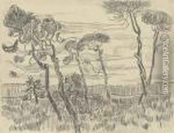 Six Pines Near The Enclosure Wall Oil Painting - Vincent Van Gogh