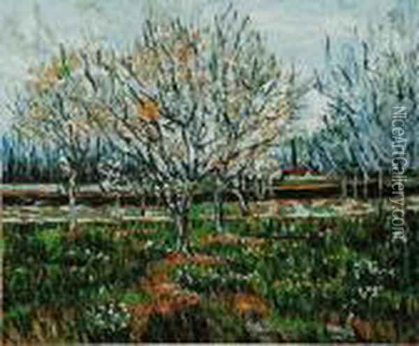 Orchard In Blossom Oil Painting - Vincent Van Gogh