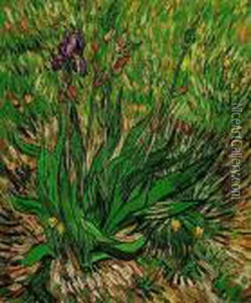 The Iris Oil Painting - Vincent Van Gogh