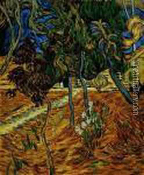 Trees In The Garden Of St. Paul Hospital Oil Painting - Vincent Van Gogh