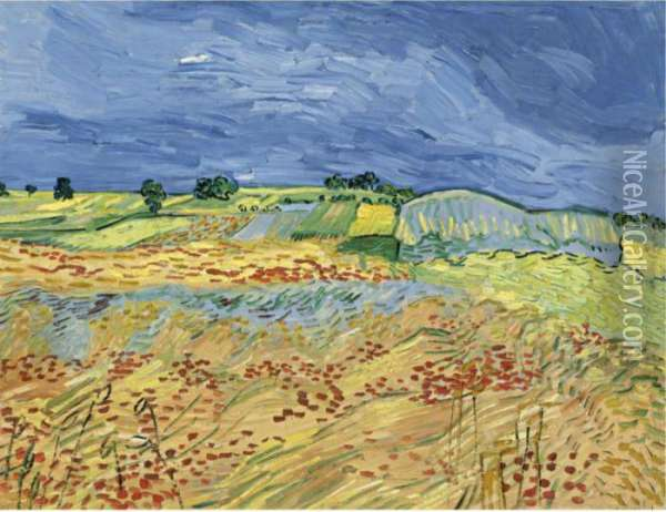 The Fields (wheat Fields) Oil Painting - Vincent Van Gogh