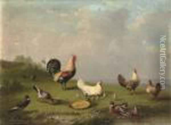 Poultry In The Farmyard Oil Painting - Franz van Severdonck