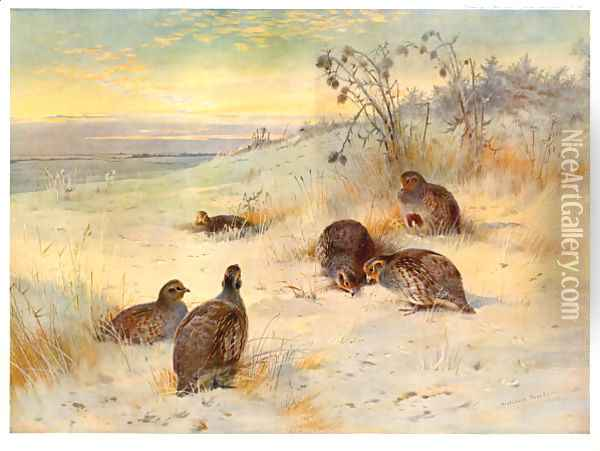 Close of a Winter's Day Oil Painting - Archibald Thorburn