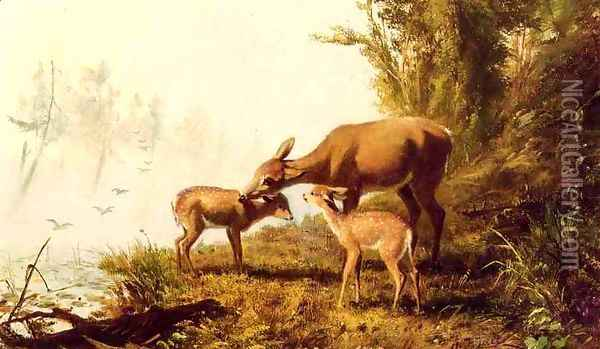 Deer in the Woods Oil Painting - Arthur Fitzwilliam Tait