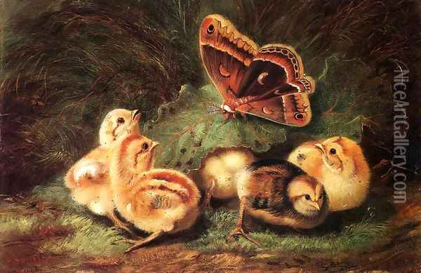 Young Chickens Oil Painting - Arthur Fitzwilliam Tait