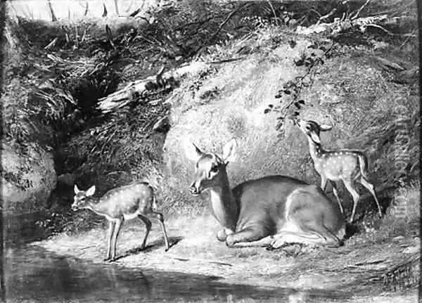 Doe and Two Fawns Oil Painting - Arthur Fitzwilliam Tait