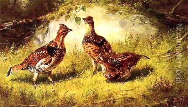 Ruffed Grouse Oil Painting - Arthur Fitzwilliam Tait