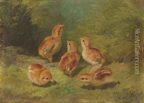 Young Grouse Oil Painting - Arthur Fitzwilliam Tait