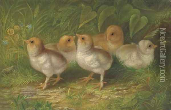 Expecting Chicks Oil Painting - Arthur Fitzwilliam Tait