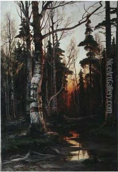Birch Forest At Sunset Oil Painting - Iulii Iul'evich (Julius) Klever