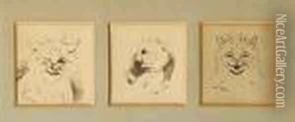 Wink Wink; Unbelievable!; How Delightful! (aset Of Three Within One Frame) Oil Painting - Louis William Wain