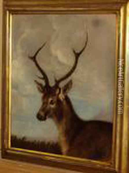 Head Of A Stag Oil Painting - James Ward