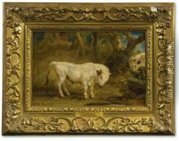 A Confrontation Between Two Chillingham Wild White Bulls Oil Painting - James Ward