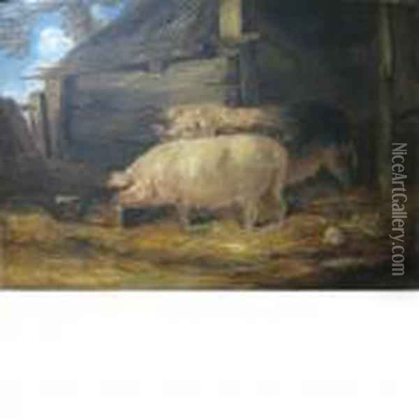 Two Sows Oil Painting - James Ward