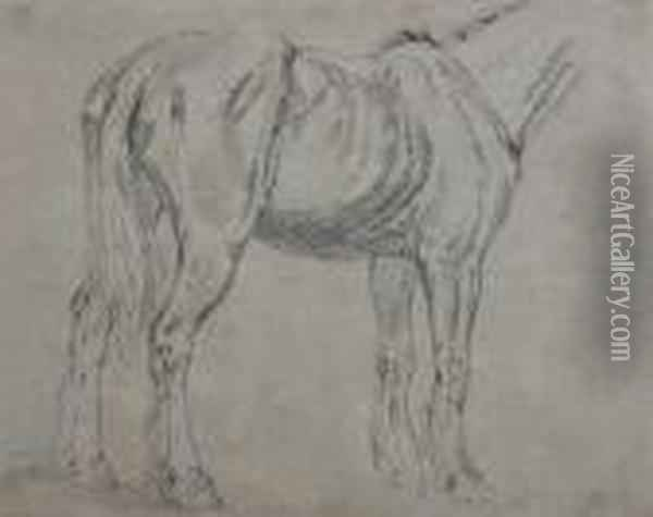 Study Of A Cart Horse Oil Painting - James Ward