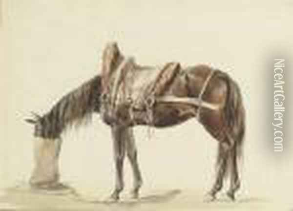 A Saddled Horse Eating From A Feed Bag Oil Painting - James Ward