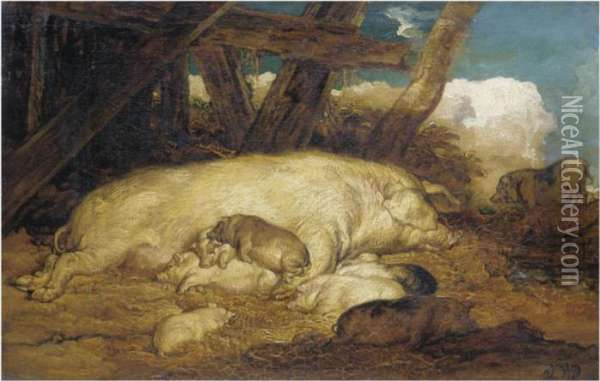 A Sow With Piglets Oil Painting - James Ward