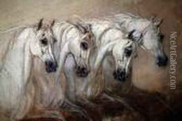 Four Grey Horses, A Study Oil Painting - James Ward