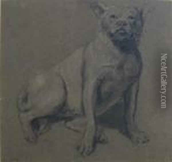 Study From Nature, Bull Dog Oil Painting - James Ward
