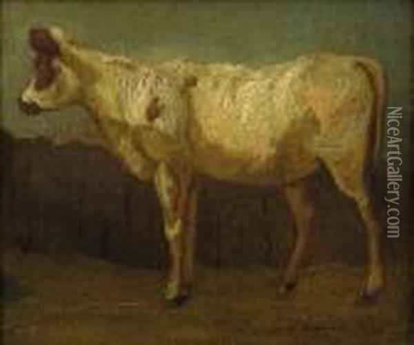 Portrait Of A Cow Oil Painting - James Ward