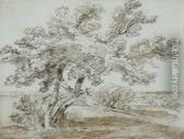 Trees In A Landscape Oil Painting - James Ward