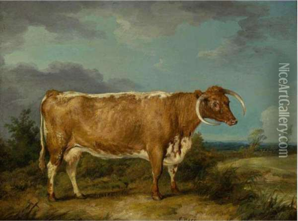 Longhorn Cow Oil Painting - James Ward