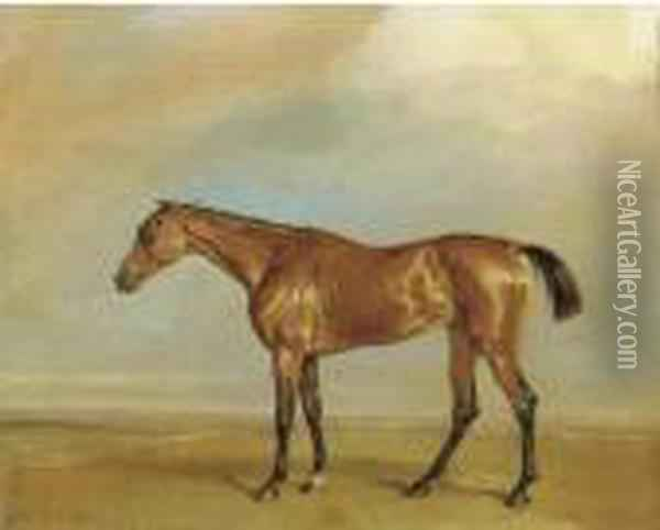 The Marquess Of Exeter's Augusta, At Newmarket Oil Painting - James Ward