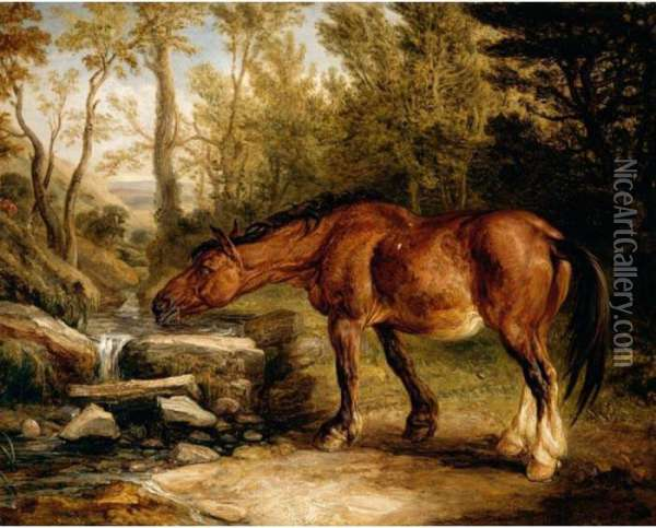 A Horse Drinking At A Stream Oil Painting - James Ward