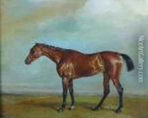 Lord Exeter's Augusta, Newmarket Oil Painting - James Ward