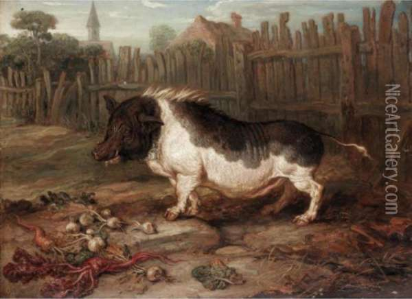 A Hog In A Yard Oil Painting - James Ward