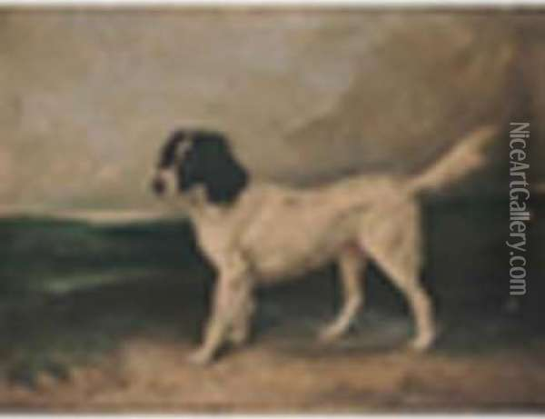 A Newfoundland In A Landscape Oil Painting - James Ward