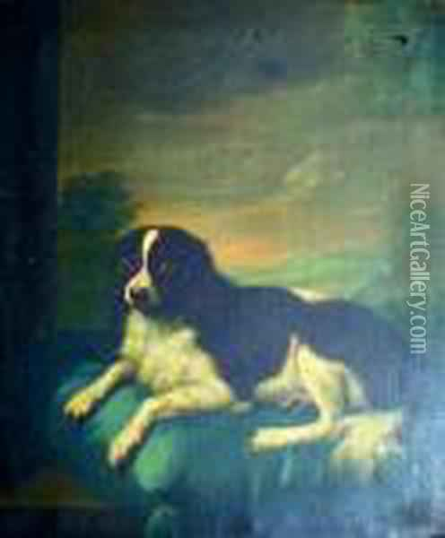 A Spaniel On A Cushion Oil Painting - John Wootton