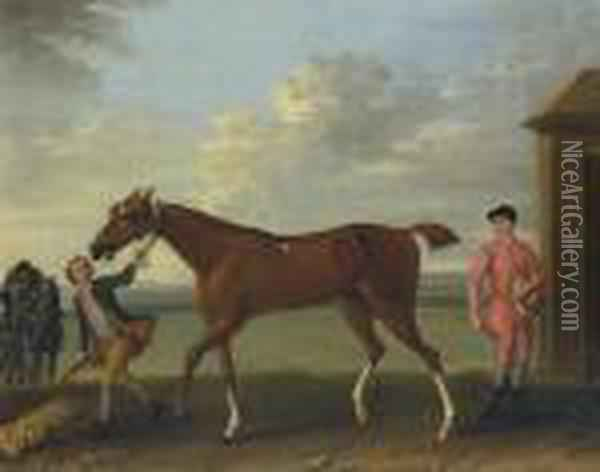 A Chestnut Racehorse Held By A 